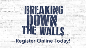 Breaking Down the Walls image